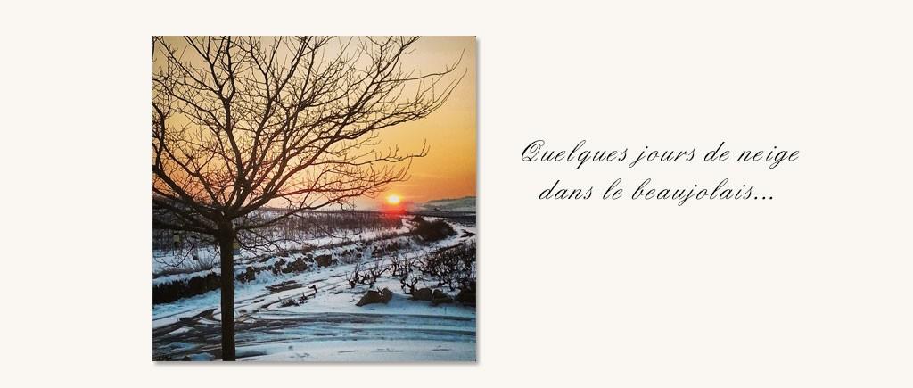 Quelques jours de neige dans le Beaujolais