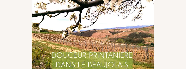 Douceur printanière dans le Beaujolais